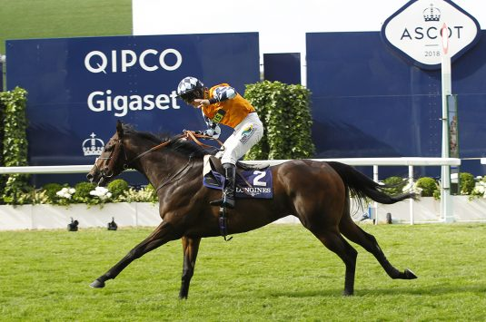 Cliffs of Capri wins at Ascot for Jamie Osborne. Photo: Steve Davies