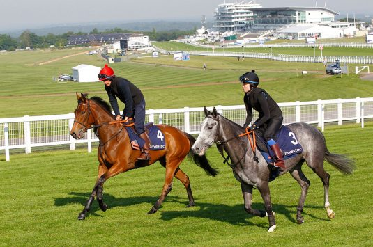 Clive Cox Oaks contender Perfect Clarity (left) has a spin round Epsom at the Breakfast With The Stars Event. Steve   Davies www.sdphotos.co.uk