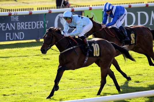 Sunday Star and Gerald Mosse win at Newmarket. Photo: Steve Davies