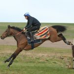 Whisper and Davy Russell schooling at Seven Barrows